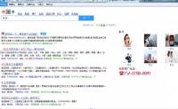 搜索引擎源码可做泛目录程序 搜索小偷程序